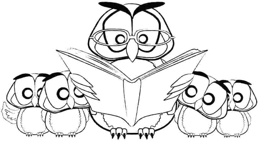 825x450 Owl Coloring Pages To Print
