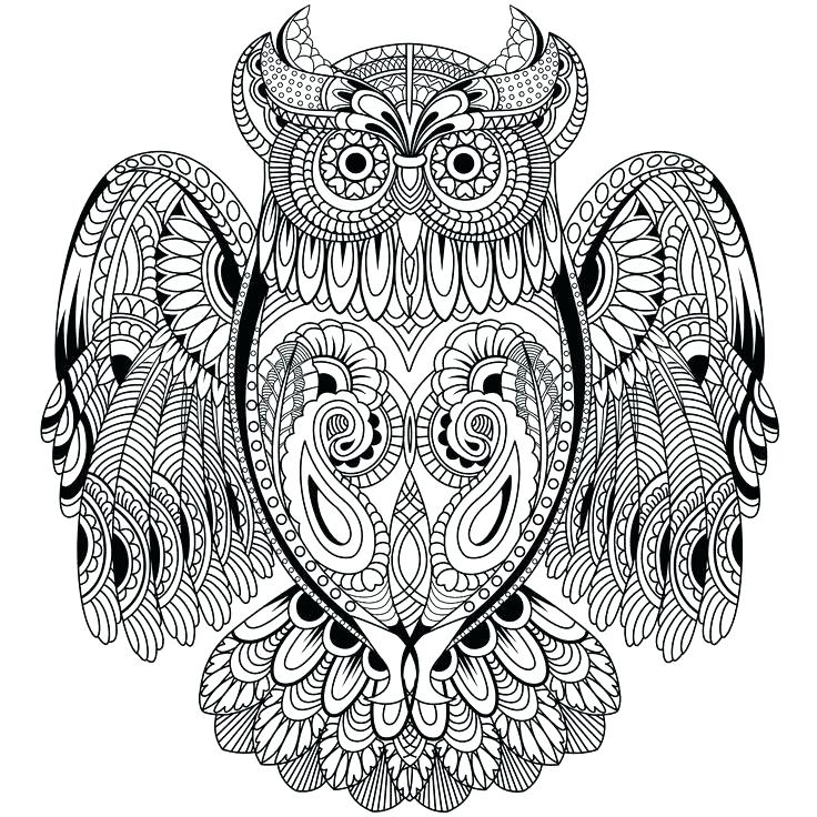 736x736 Printable Flying Owl Coloring Pages
