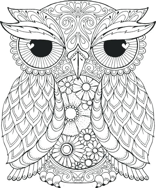 535x645 Best Of Owl Printable Coloring Pages Or Owl Printable Coloring