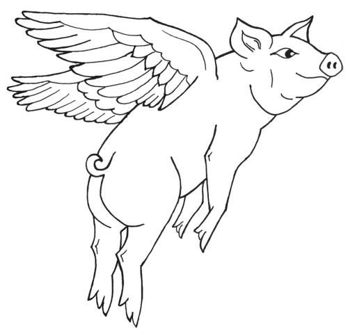 500x473 Flying Pig Coloring Pages Kids Coloring Pages