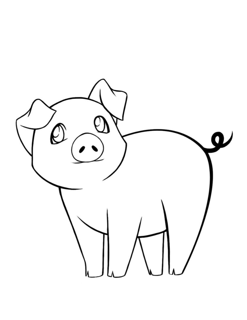 835x1080 Pig Coloring Pages