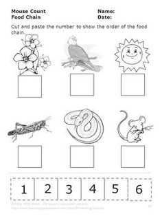 236x314 Food Chain Coloring Page Free Download