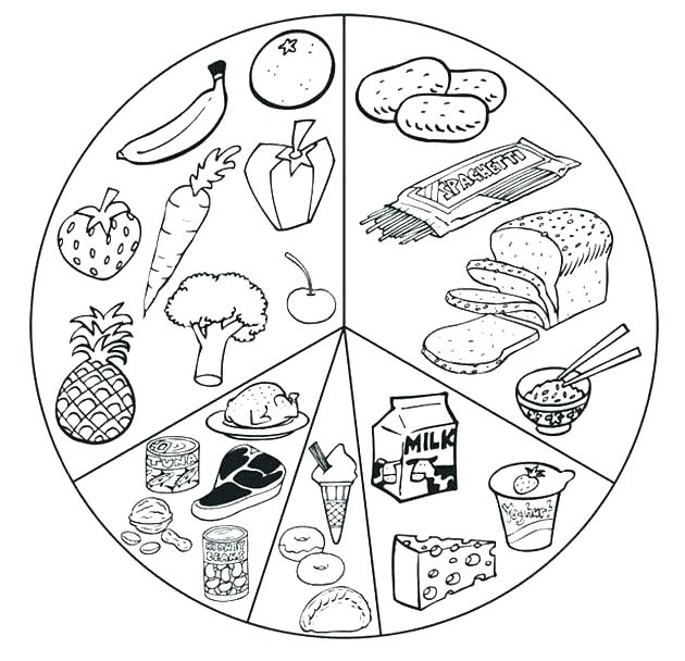 630x608 Food Chain Coloring Pages