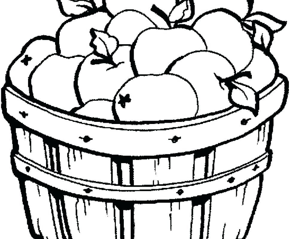 973x800 Picnic Basket Coloring Page Bushel Basket Of Apples Coloring Page