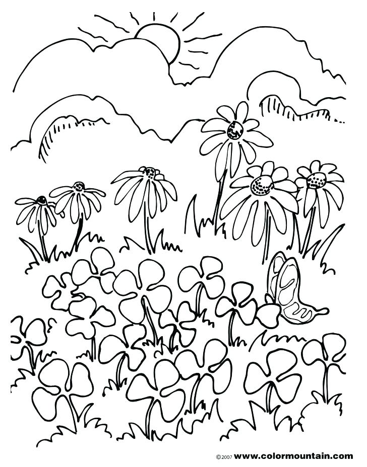 728x928 Field Day Coloring Page Colori On Football Field Coloring Pages