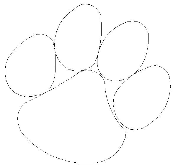 586x560 Footprint Coloring Page Black Bear Tiger Paw Free Pages Black Bear