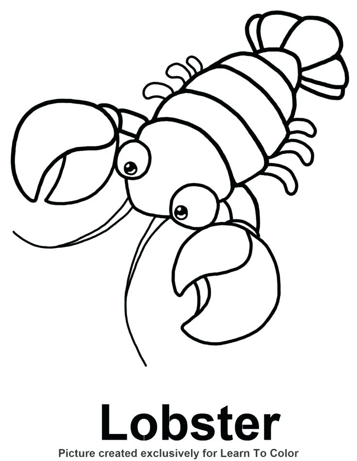 736x952 Footprint Coloring Page Superior Lobster Coloring Page Free