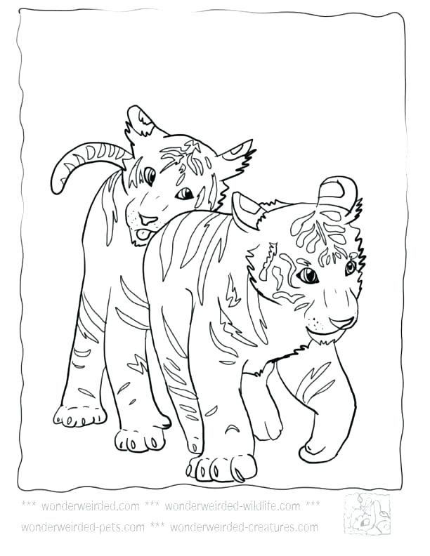 612x792 Footprint Coloring Page Baby Tiger Coloring Pages Free Coloring