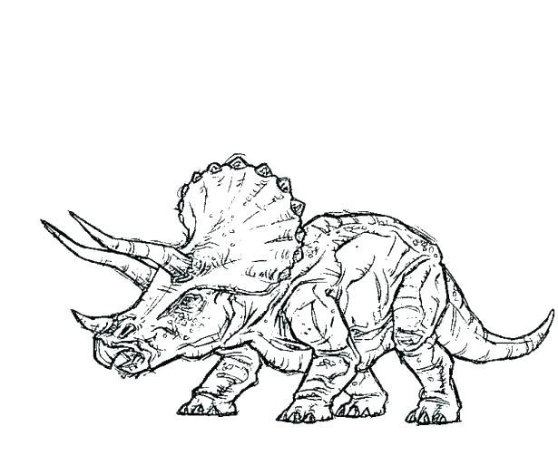 615x513 Jurassic Park Coloring Page Park Raptor Coloring Pages Park