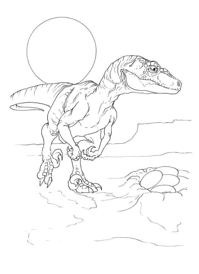 640x880 Velociraptor Coloring Pages Related Post Jurassic Park