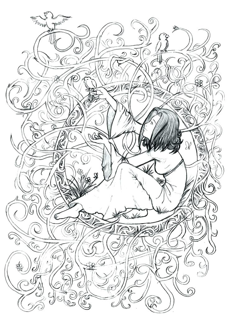 Forest Adult Coloring Pages