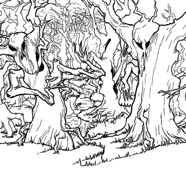 600x561 Forest Coloring Page Haunted Forest Coloring Page Enchanted Forest