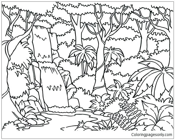 613x492 Forest Coloring Forest Coloring Pages Waterfall In The Forest