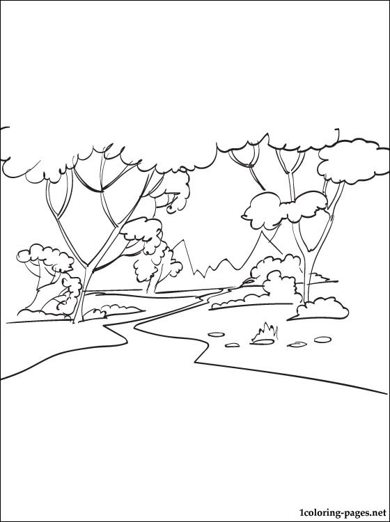 560x750 Forest Coloring Page Coloring Pages