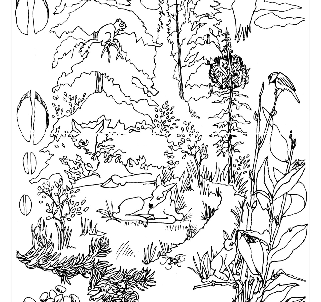 1275x1200 New Adult Coloring Pages Of Forest Animals Printable Tearing