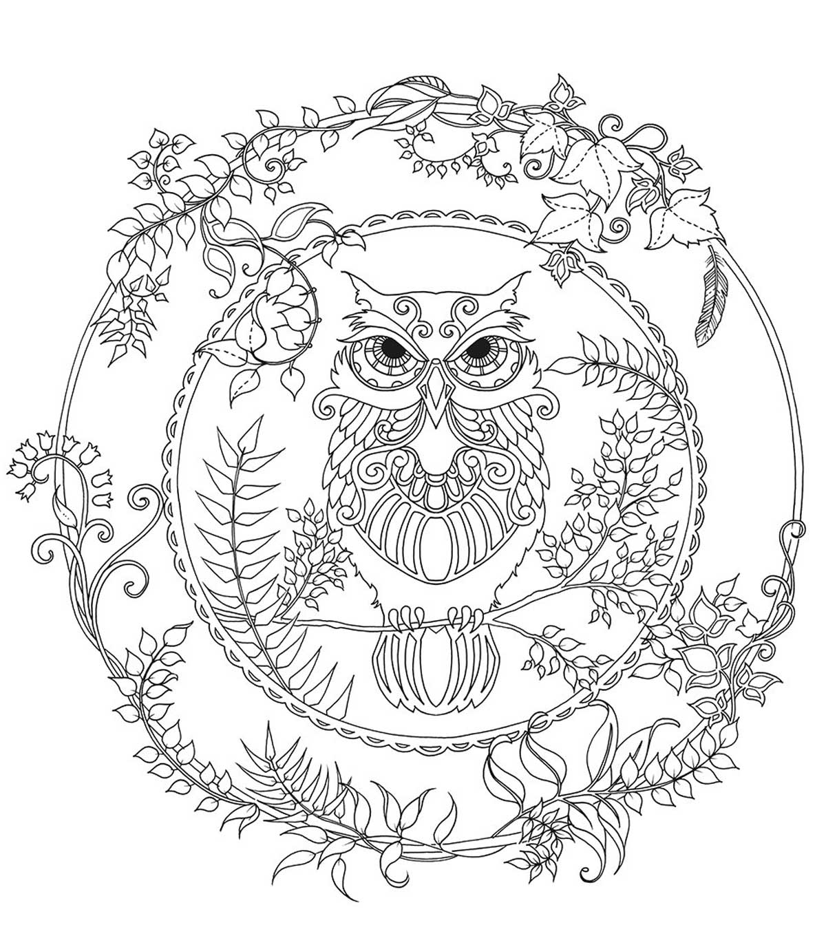 1200x1360 Rain Forest Trees Coloring Page Many Interesting Pages For Adults