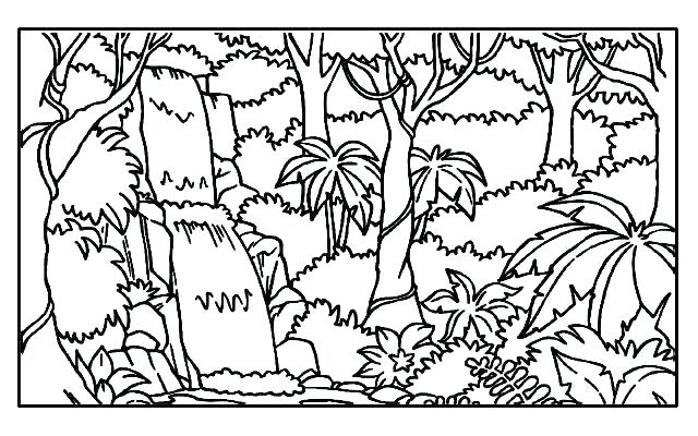 640x400 Rainforest Coloring Pages Coloring Pages Collection Forest