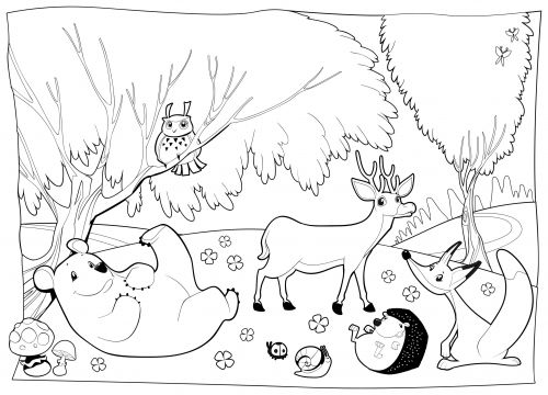 500x360 Forest Animals Coloring Pages Download Forest Animals Coloring