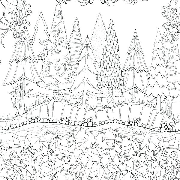 600x600 Forest Colouring Pages Forest Trees Coloring Pages