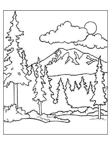 370x480 Preschool Forest Coloring Page