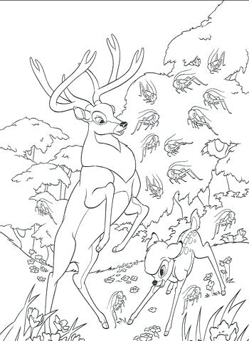 350x480 Roe And In The Forest Coloring Page Free Printable Free Coloring