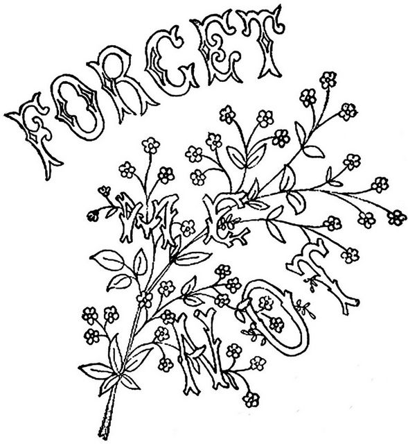 Forget Me Not Coloring Page