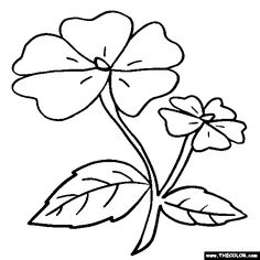 236x236 Forget Me Not Flower Myosotis Online Coloring Page Art Therapy