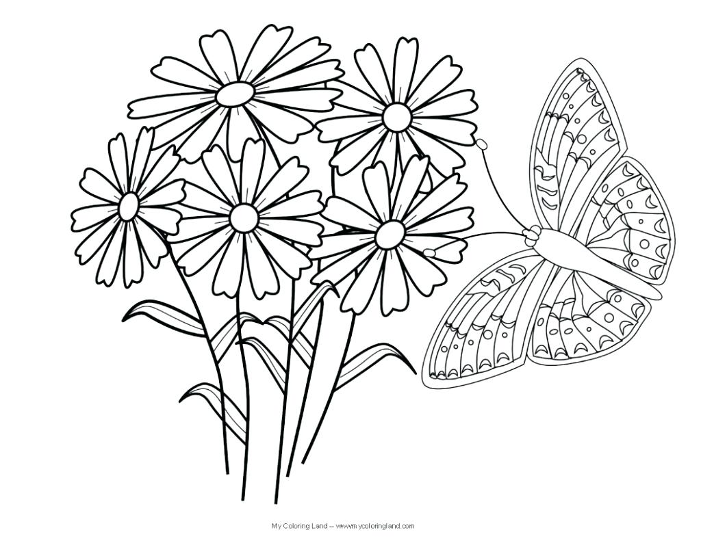 1024x791 Free Flower Coloring Pages Pdf Adult Butterflies And Flowers