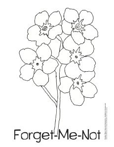 231x299 Clipart Forget Me Not Flowers