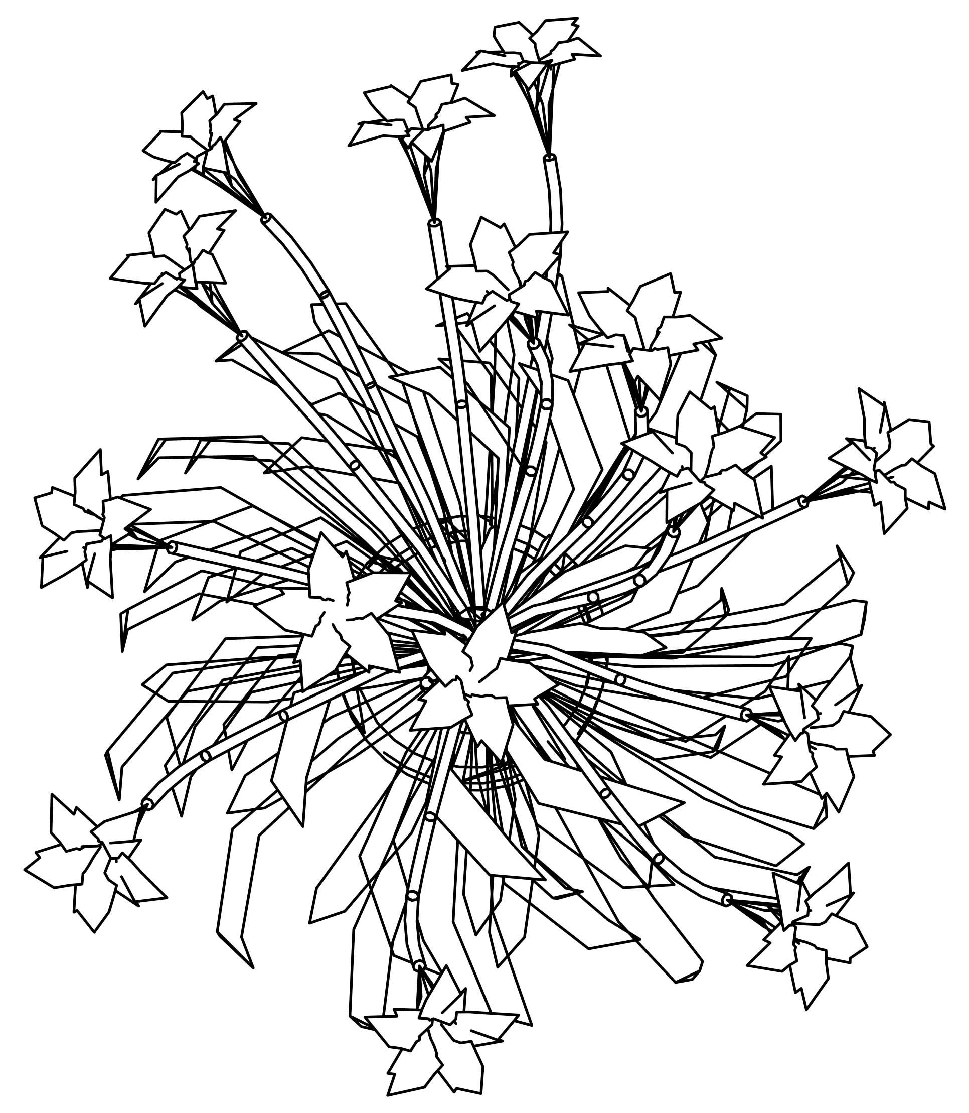1932x2218 Best Forget Me Not Coloring Page For Flower Outline Inspiration