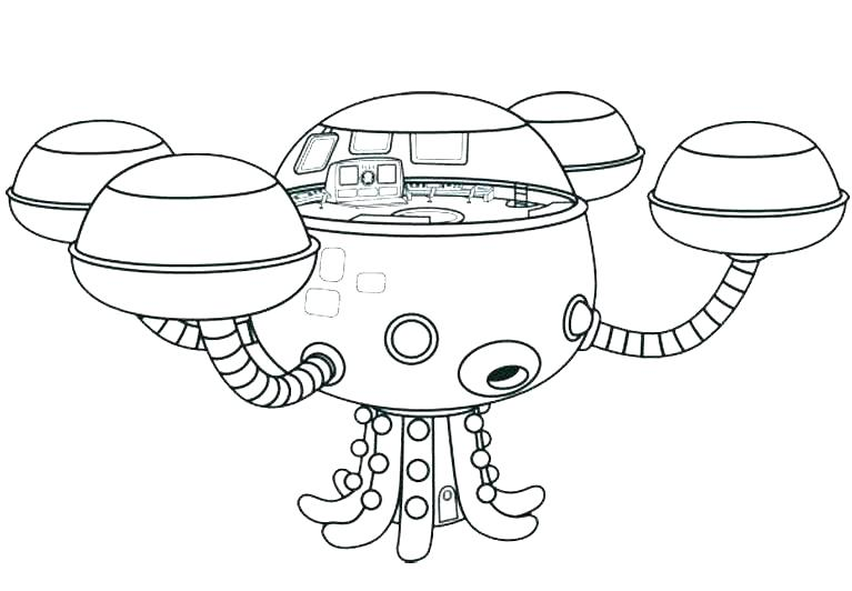 767x532 Fossil Coloring Pages Stegosaurus Coloring Pages Fossil Coloring