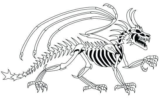 550x337 Stegosaurus Coloring Page Fossil Coloring Pages Stegosaurus