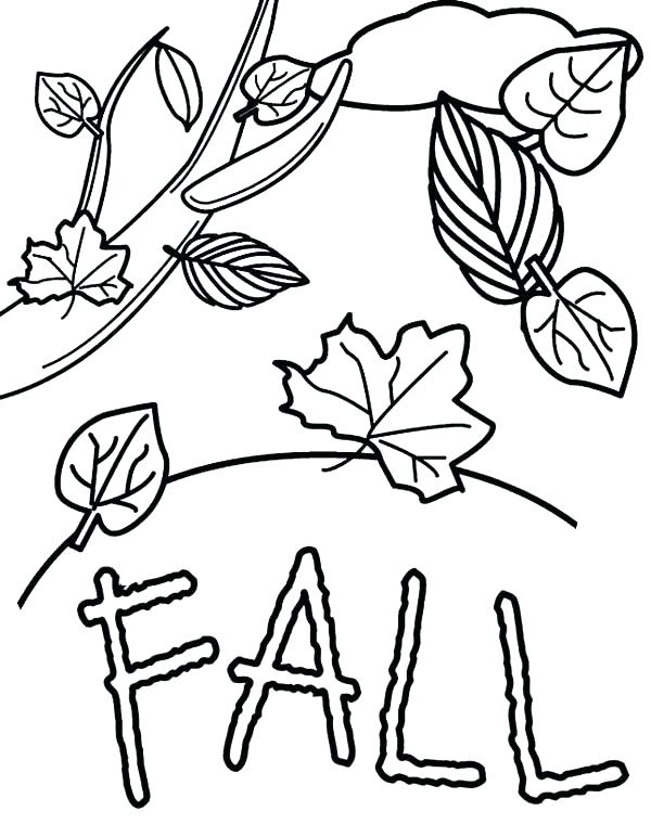 600x760 Seasons Coloring Page Season Coloring Pages Autumn Fall Leaves