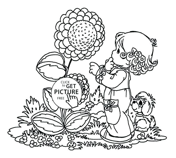 736x661 Seasons Coloring Page Spring Flower Coloring Pages For Big Spring