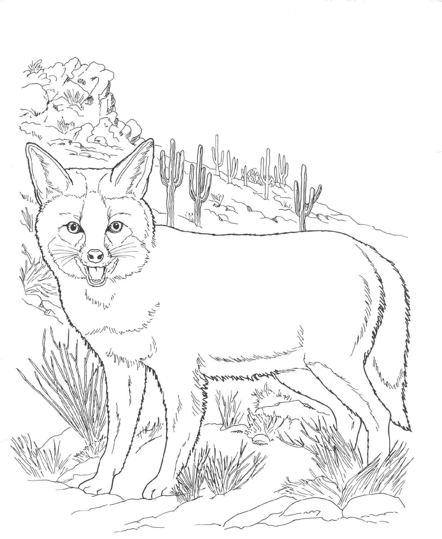 1500x1828 Fox Adult Coloring Pages Within