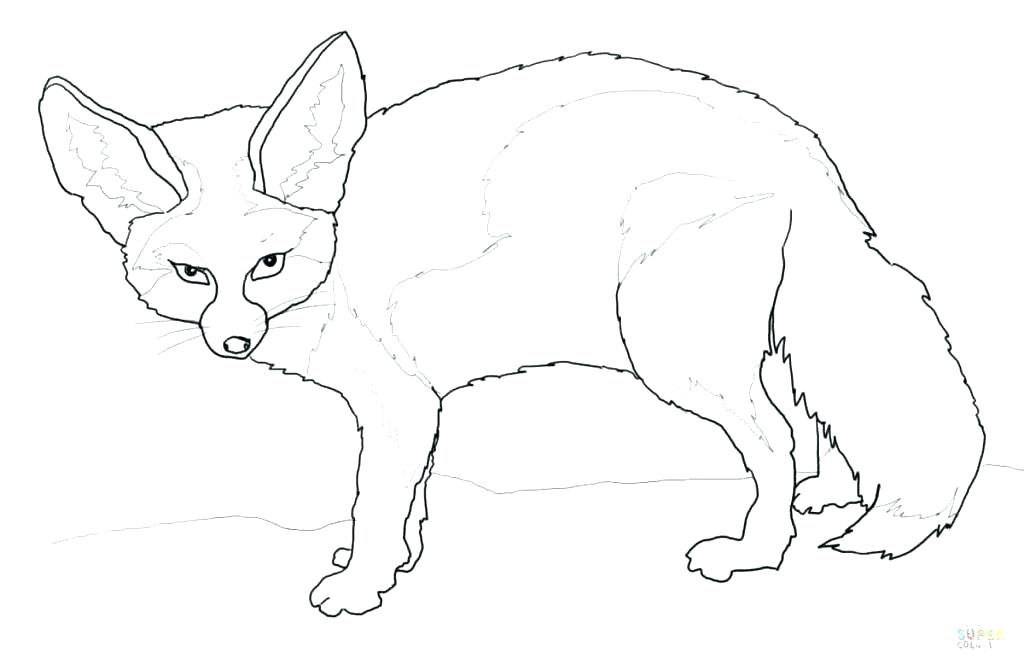 1024x669 Red Fox Coloring Pages Fox Coloring Pages Packed With Fox Coloring
