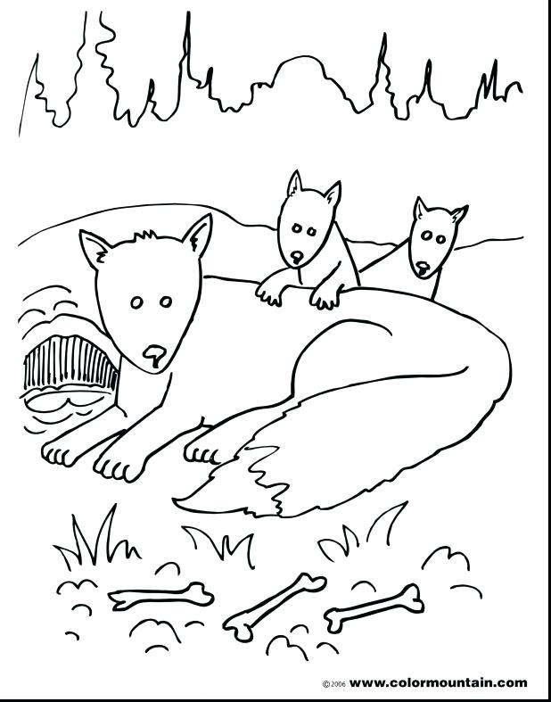 618x787 Fox And The Hound Coloring Pages Extraordinary Fox Family Coloring