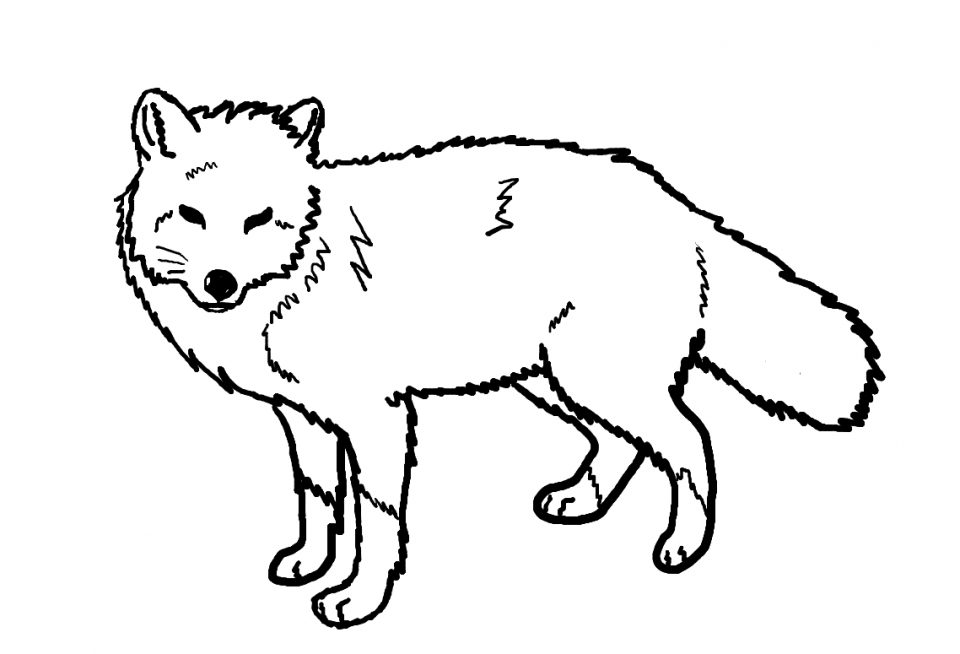 960x654 Fox Coloring Pages Photo High Definition For Preschoolers