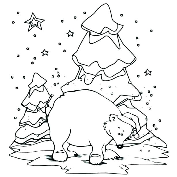 615x612 Arctic Animals Coloring Pages With Arctic Coloring Pages Arctic