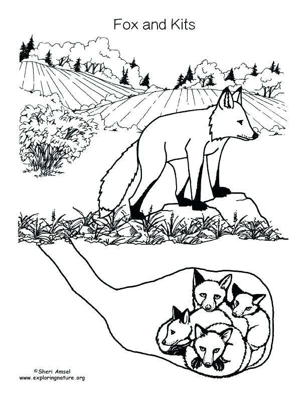 612x792 Childrens Christmas Coloring Pages Free Kids Coloring Red Fox