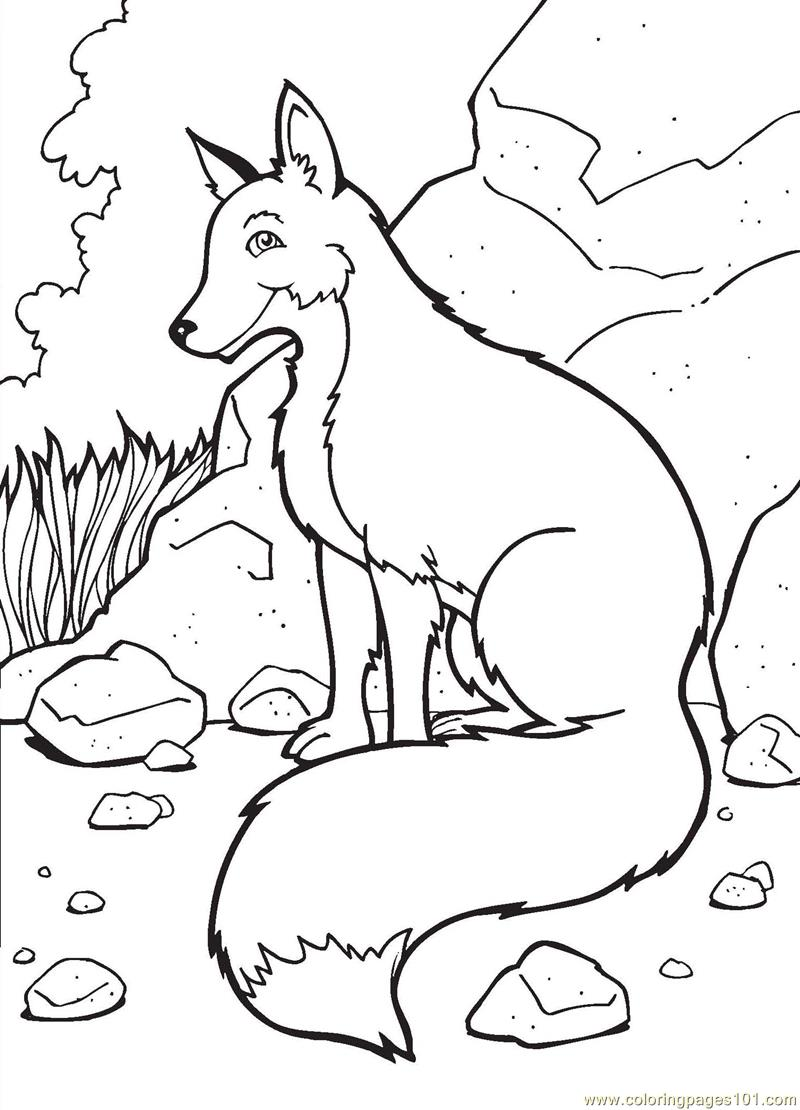 800x1110 Fox Coloring Pages Coloring Pages Fox