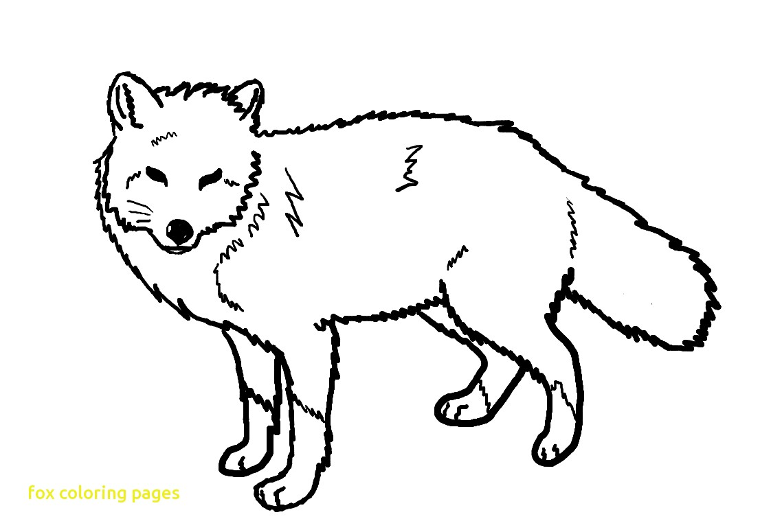 1138x775 Fox Coloring Pages With Free Printable For Kids Of Baby