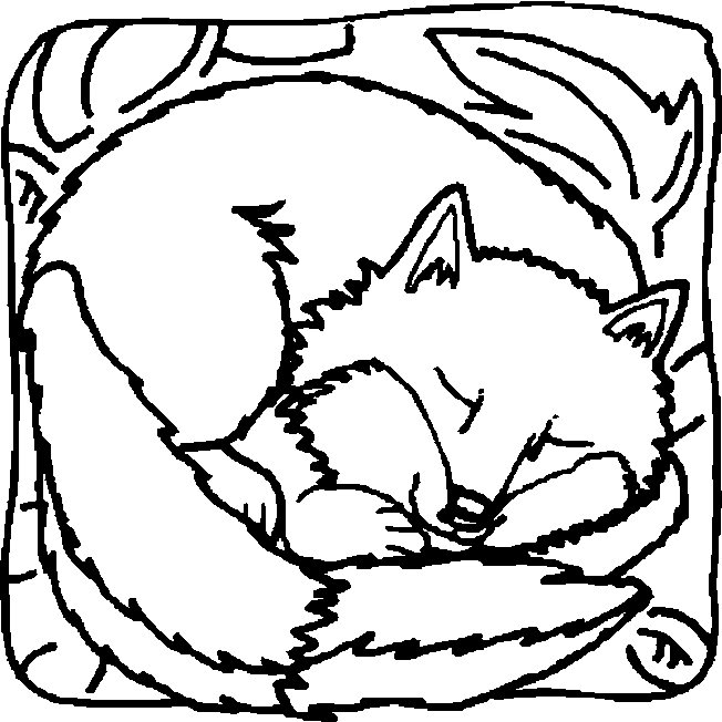 652x652 Sleeping Fox Coloring Page