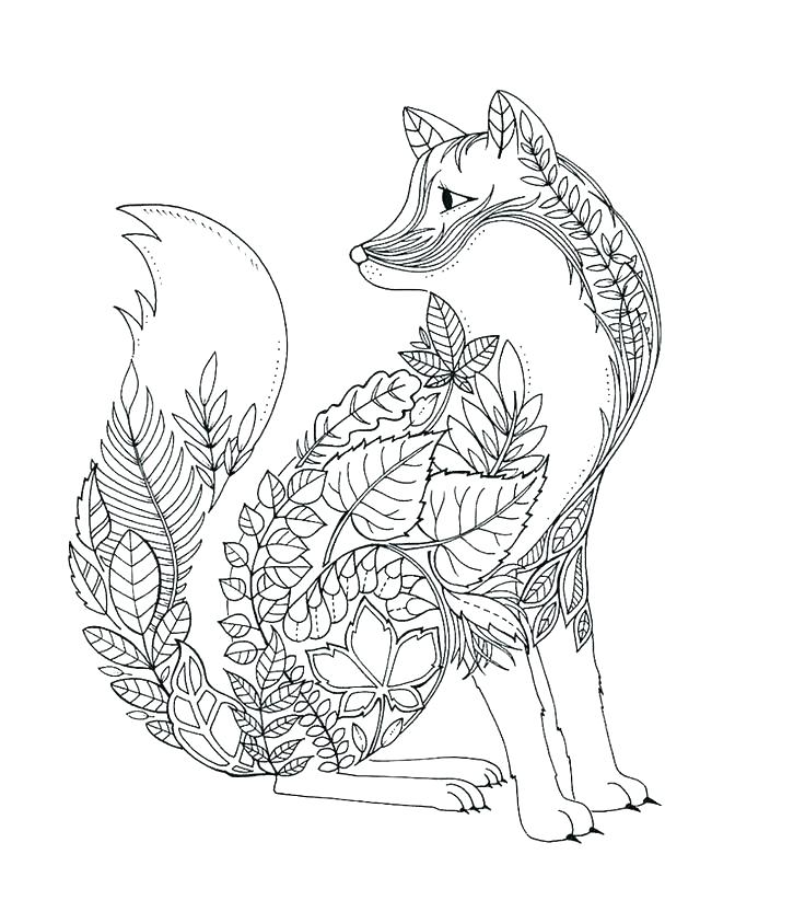 736x833 Arctic Coloring Pages Arctic Coloring Pages Fox Coloring Pages