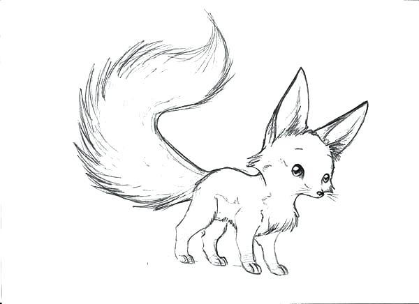 600x436 Baby Fox Coloring Pages Fox Coloring Pages To Print Baby Fox
