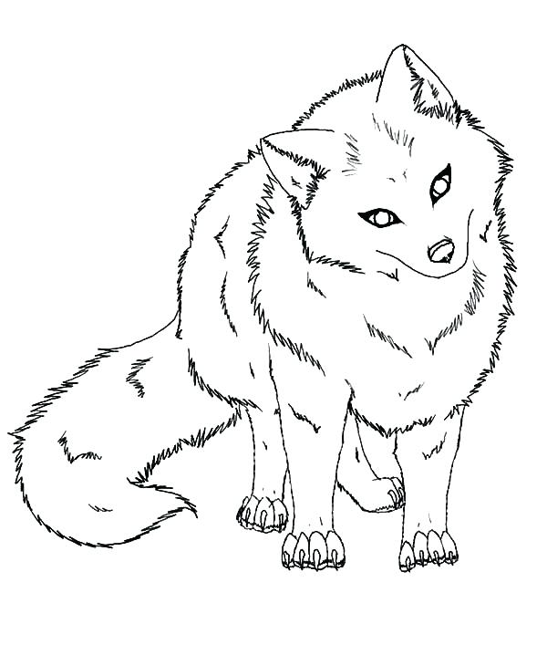 600x718 Animal Jam Arctic Fox Coloring Pages Baby Animals Head