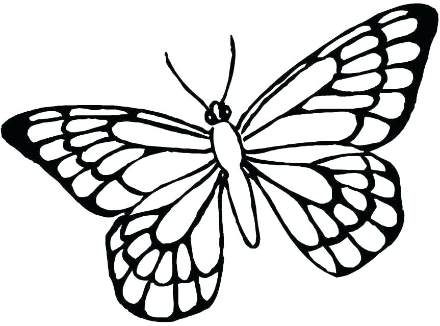 863x639 Butterfly Coloring Page Printable Coloring Pages Of Butterflies