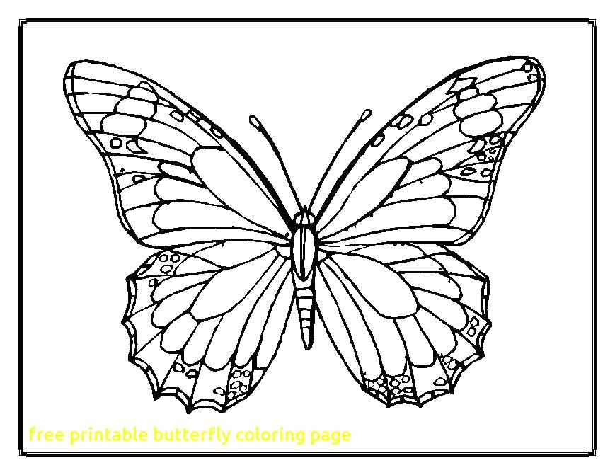 869x671 Free Printable Butterfly Coloring Pages Free Printable Butterfly