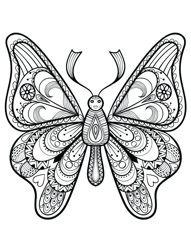 618x816 Butterfly Coloring Pages Free