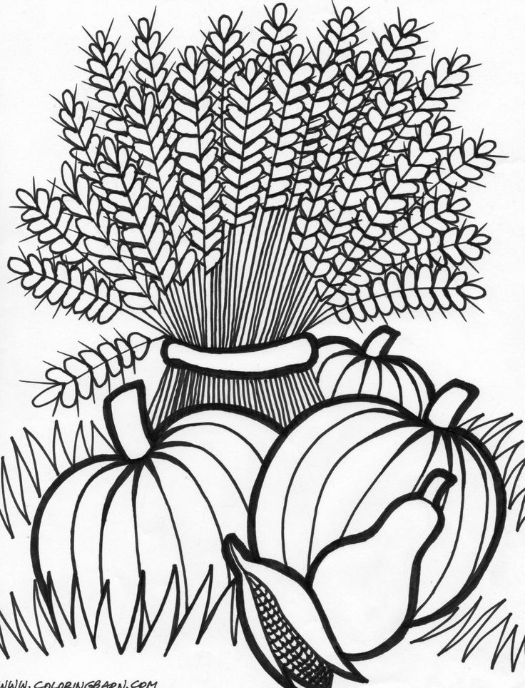 Free Adult Thanksgiving Coloring Pages